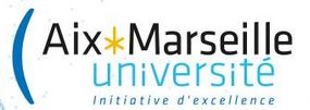 AIX MARSEILLE UNIVERSITE (AMU)